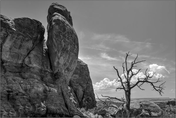Arches National Park (Utah) - © Massimo Vespignani