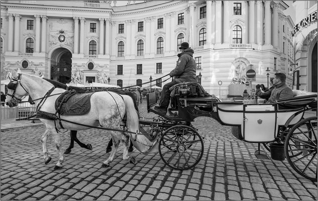 Vienna: carrozza in Michaelerplatz - © Massimo Vespignani