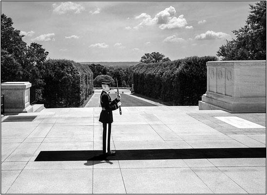 Washington: Arlington National Cemetery, cambio della Guardia d'Onore alla tomba del Milite Ignoto - © Massimo Vespignani