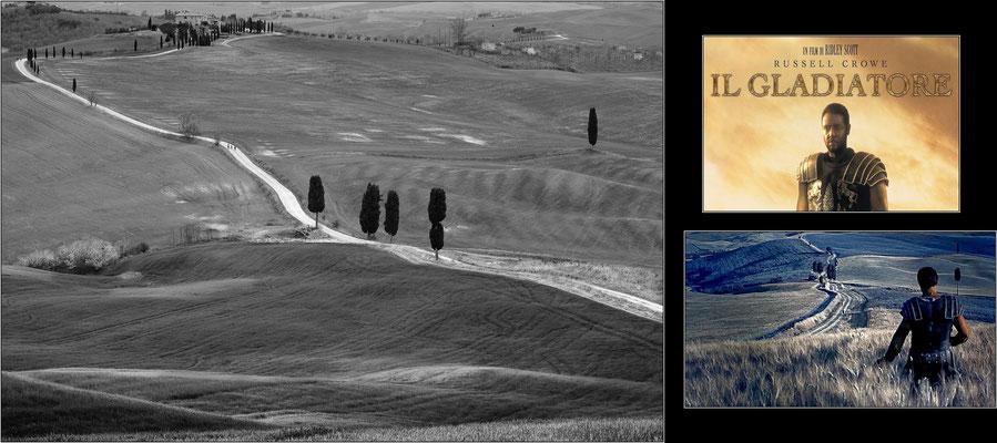 """Pienza, località Terrapille: esattamente qui, lungo questa strada bianca fra i campi, è stata girata la scena finale dei Campi Elisi del celeberrimo film """"Il Gladiatore"""" di Ridley Scott -  © Massimo Vespignani"""