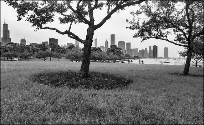 Chicago: veduta dal Museum Campus - © Massimo Vespignani