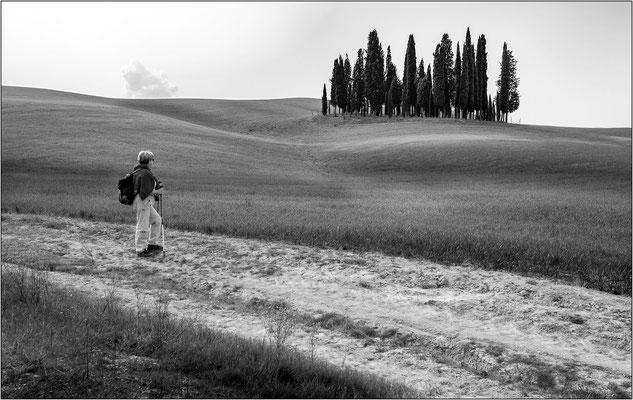 San Quirico d'Orcia - © Massimo Vespignani