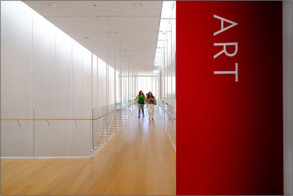 Chicago: Art Institute of Chicago (Modern Wing) - © Massimo Vespignani