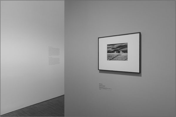 "Vienna: Museo Albertina, collezione di opere fotografiche. ""Two barns and shadow"" di Minor White - © Massimo Vespignani"