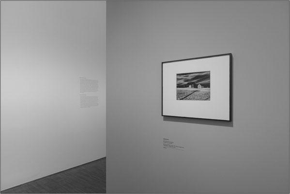 """Vienna: Museo Albertina, collezione di opere fotografiche. """"Two barns and shadow"""" di Minor White - © Massimo Vespignani"""