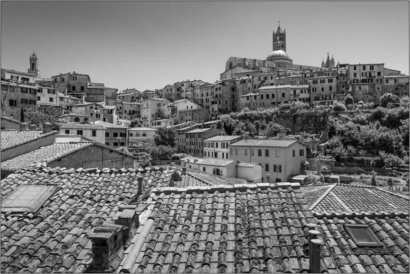 Siena - © Massimo Vespignani