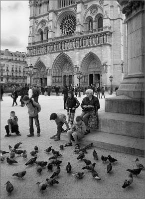 Notre-Dame de Paris - © Massimo Vespignani