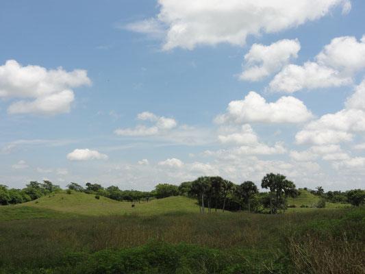 """Cerro de las Mesas, se ve la simetría de dos """"edificios largos"""" y la larga plaza"""