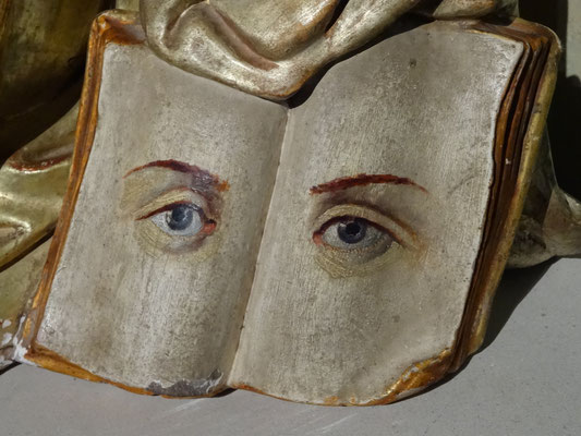 with a book and its characteristic eyes