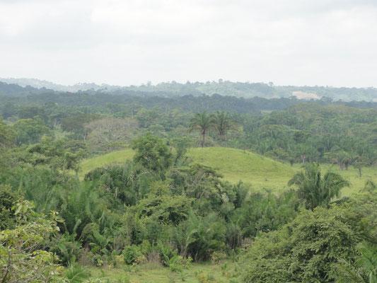 San Lorenzo, montículo en la planicie que se usaba para estar protegido de las inundaciones del río