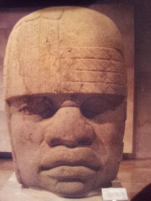 cabeza de San Lorenzo, hoy en el Museo de Antropología de Xalapa