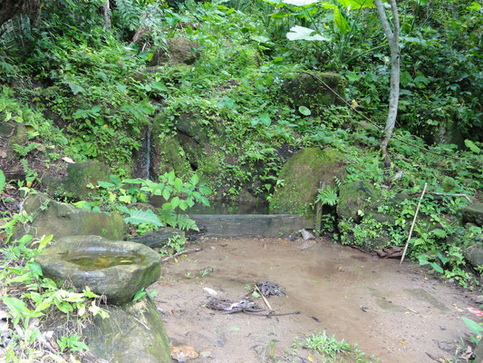 ... these figures were found at the foot of the Manatí hill, in this source...