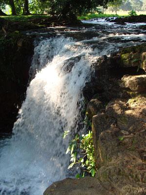 cascada / waterfall  cerca de Montepío, Veracruz