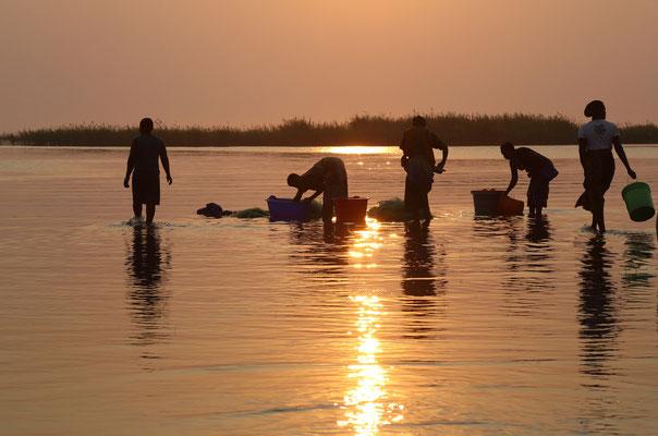 Am Malawisee