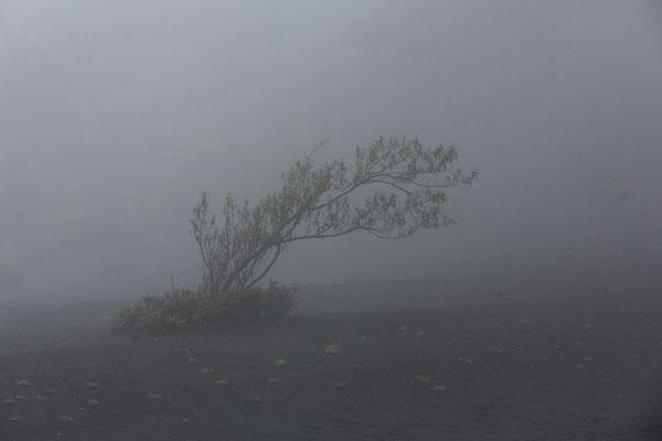 Am Vulkan Irazu. Das Wetter hätte besser sein können.