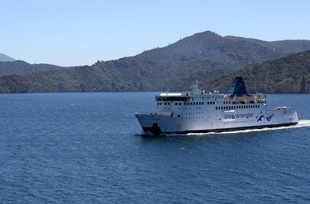 Fähre nach Wellington zwischen Nord- und Südinsel