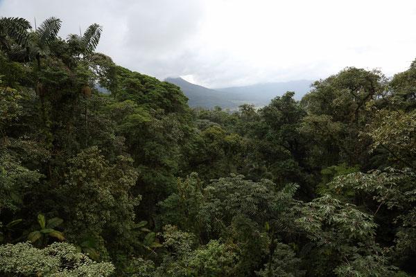Umgebung von La Fortuna