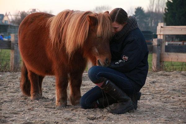 paardencoaching verbinding