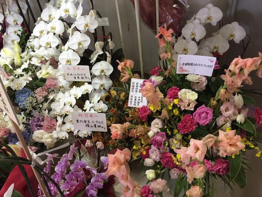 安部寮に贈られたお祝いの花1