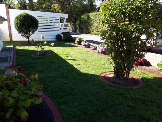 Rollrasen verlegen, Gartengestaltung Vorgarten von GreenFairway e.K.
