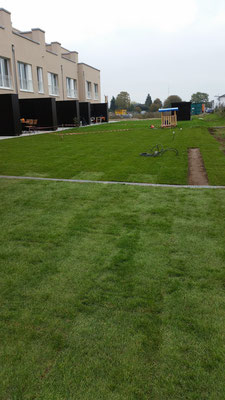 Rollrasen verlegen in Hannover, Wettbergen, Zero E Park, Burgwedel, Isernhagen, GreenFairway e.K.