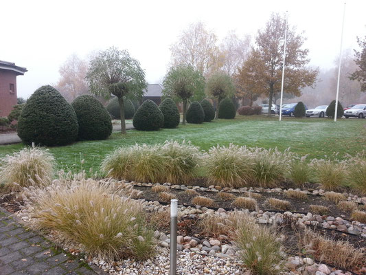 Gartengestaltung: Gräser und Stauden, GreenFairway e.K.