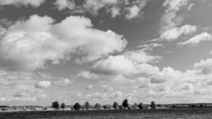 """Uwe Eckardt """" Wolken über der Heide"""""""