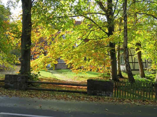 "Ulrike Gose - ""Herbst in Lünzen"""
