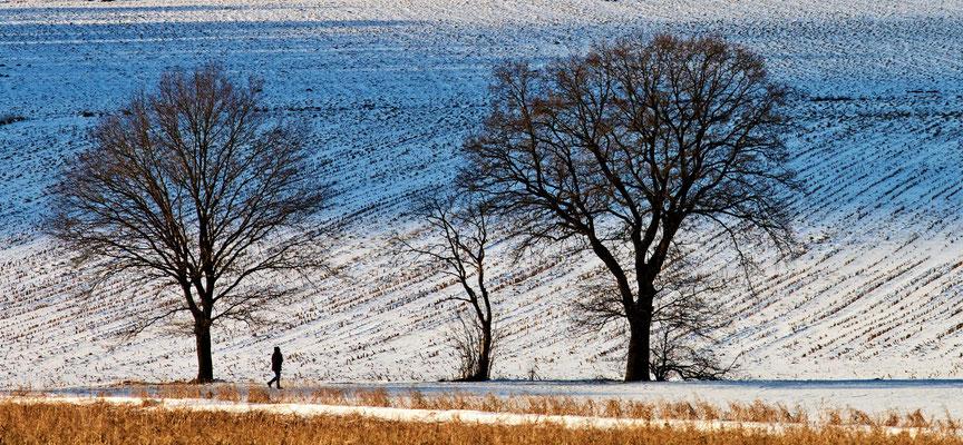 Wolfgang Steinborn: Winterlandschaft