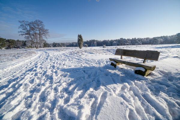 Michael Herde: Winterheide