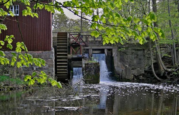 Wolfgang Steinborn: Wassermühle, Lünzen