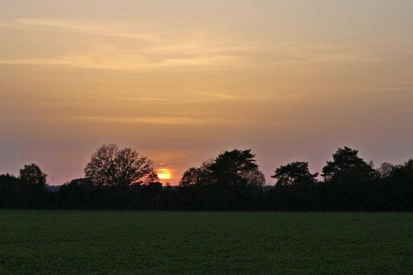 """Lothar von Alm - """"Abendsonne"""""""