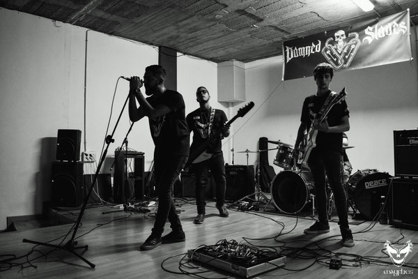 Photo by Verónica Martín Garrido 26/08/2016