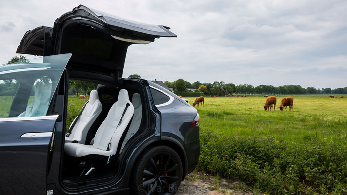 Tesla Model X, E-Rally 2019, Just Diggit