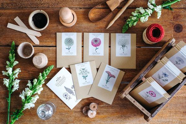 Jora Dahl Blumensamen online kaufen bei Smillas Butik