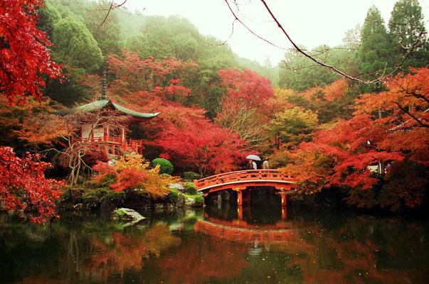 Japon © Mathilde Bouvard