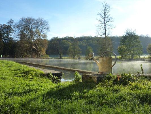 Arrosoir sur étang brumeux