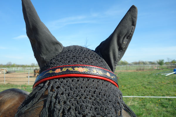 Stirnband mit Blumenranke Leathercarving