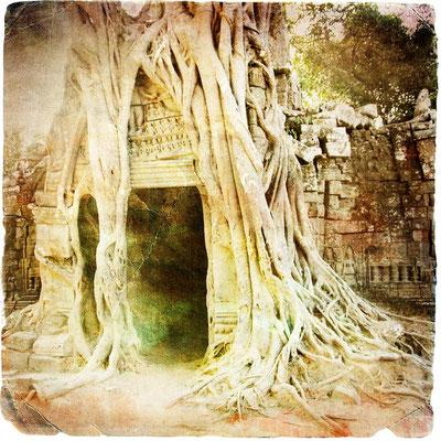 Angkor Wat - Pittoreske Schauplätze in Kambodschas berühmteste Tempelanlage