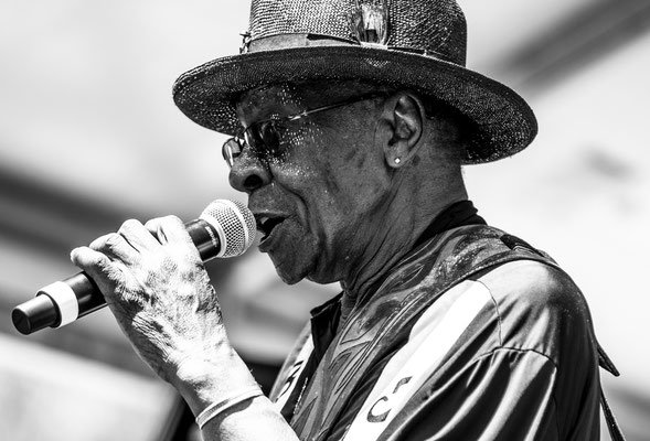 07.06.2019 - Chicago Blues Festival with Bob Stroger, pic by Sarah Kim Friedli