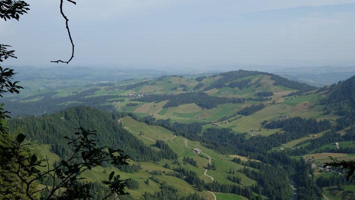 Finsterwald (Mitte links), Gfellen (rechts unten)