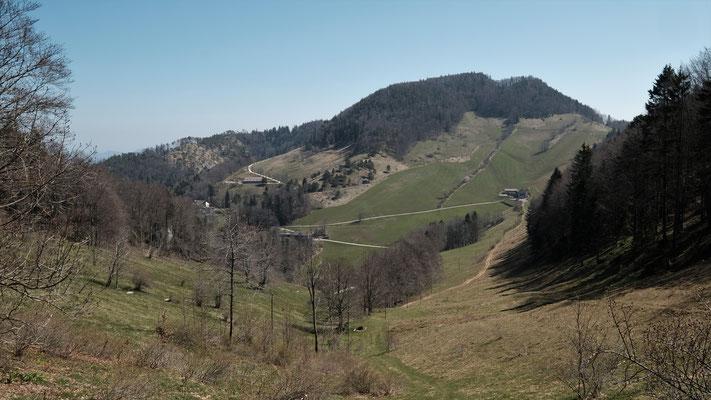 Links über dem Hof Wasserfallen: Änziane