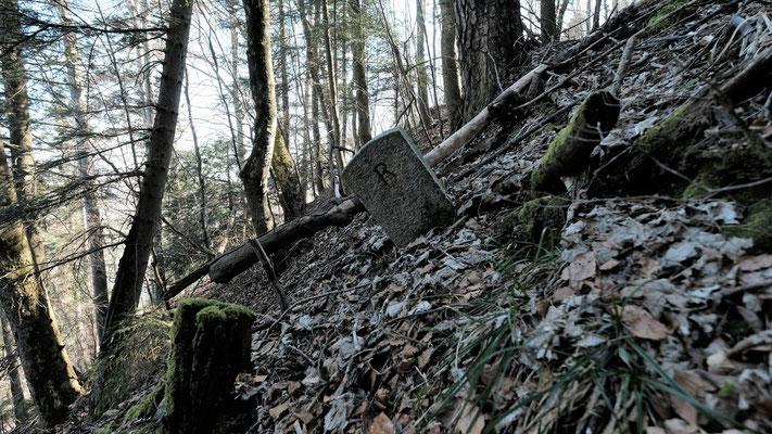 Auch der Grenzstein kämpft mit dem Gelände