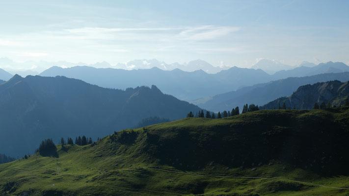 Blick zu den Alpen vom Leiterepass