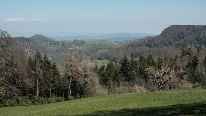 Blick von der Bergmatte Richtung Chastelen