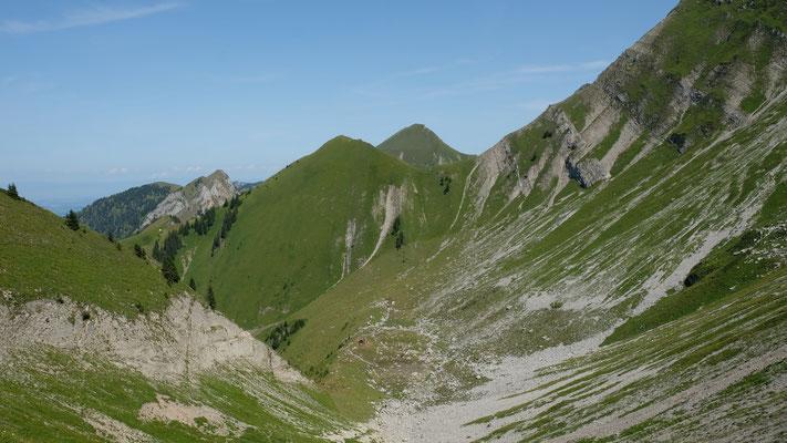 Auch der weitere Abstieg über mehrere Alpweiden ist anstrengend. Schliesslich müssen 1'100 Höhenmeter überwunden werden.