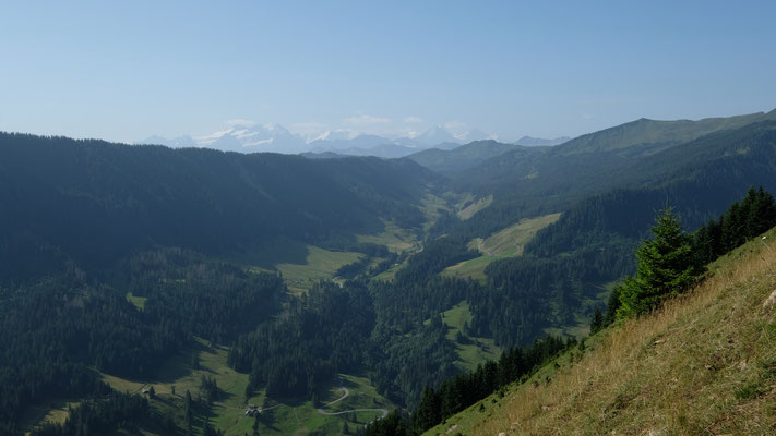 Die Alpen liessen sich blicken, leider bei bescheidener Fernsicht