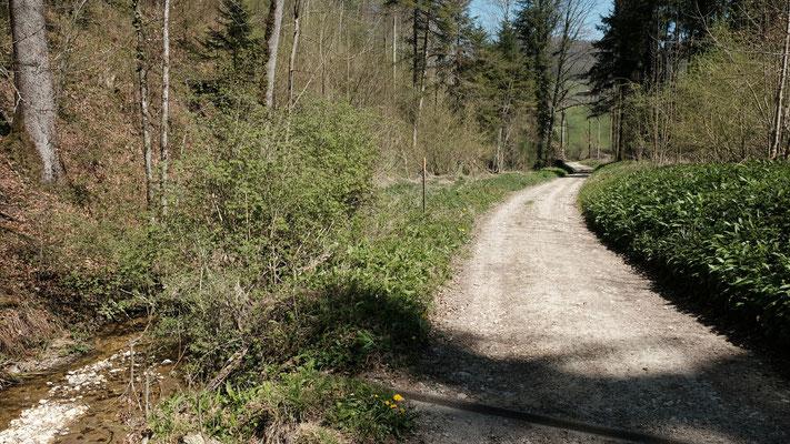 Beim Aemlisbach. Blick Richtung Reigoldswil ...