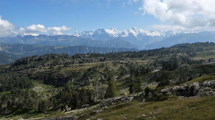 Blick über das Seefeld zu Eiger, Mönch und Jungfrau
