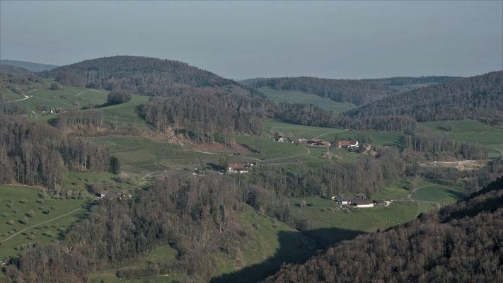 Zoom auf die Höfe